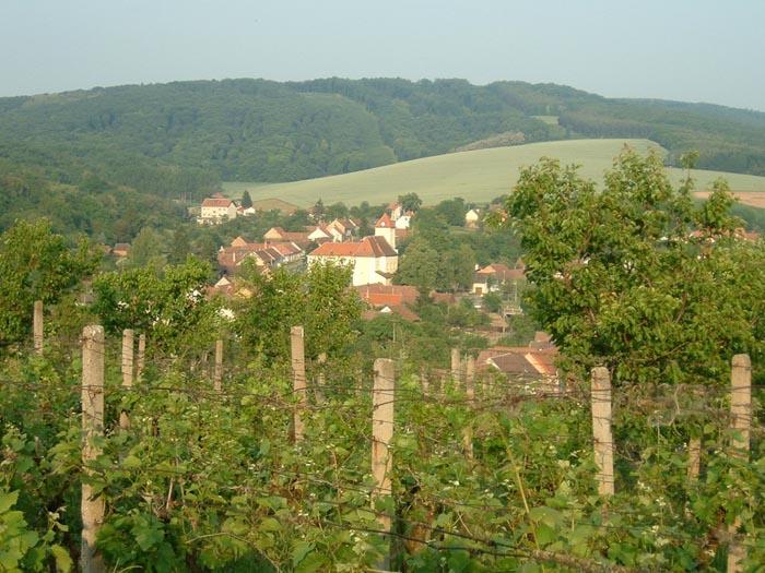 Repubblica Ceca: Ice Wine e Trdelnik