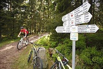 Mountain Biking in the Black Forest