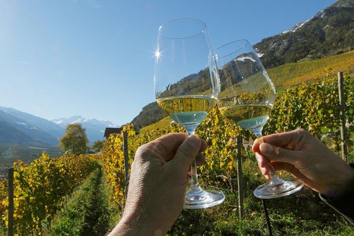 Monza, viaggio aromatico tra i vini italiani