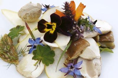 Salisburgo, le erbe aromatiche entrano nelle Vie del Gusto