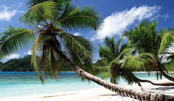 My Seychelles Experience, vinci una vacanza da vip