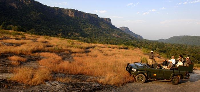 india safari02