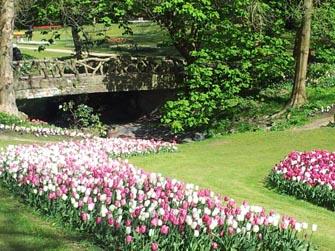 Fiandre primavera 2
