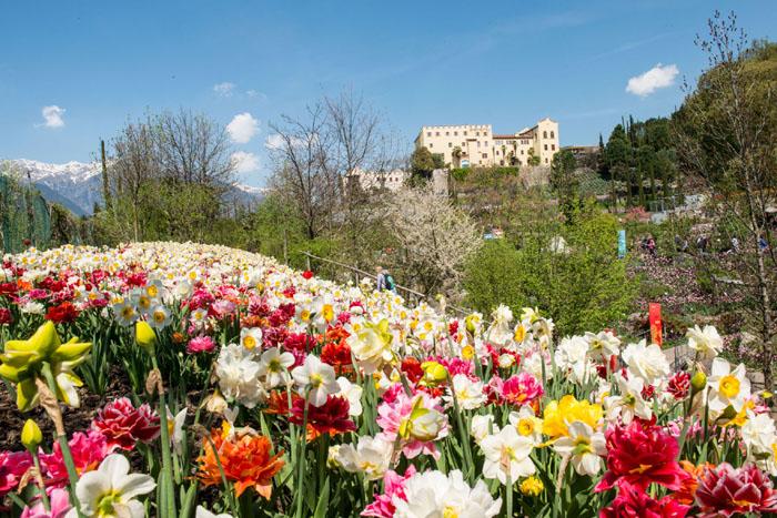 I Giardini di Sissi, la nuova stagione richiama gli innamorati