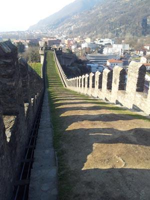La murata