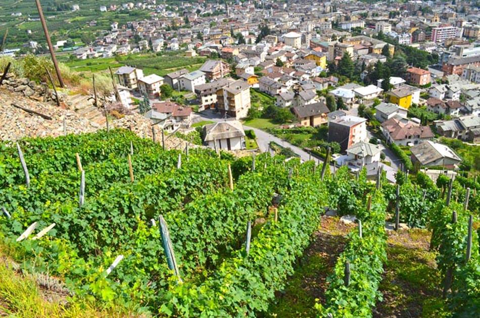 Valtellina, terra di gusto