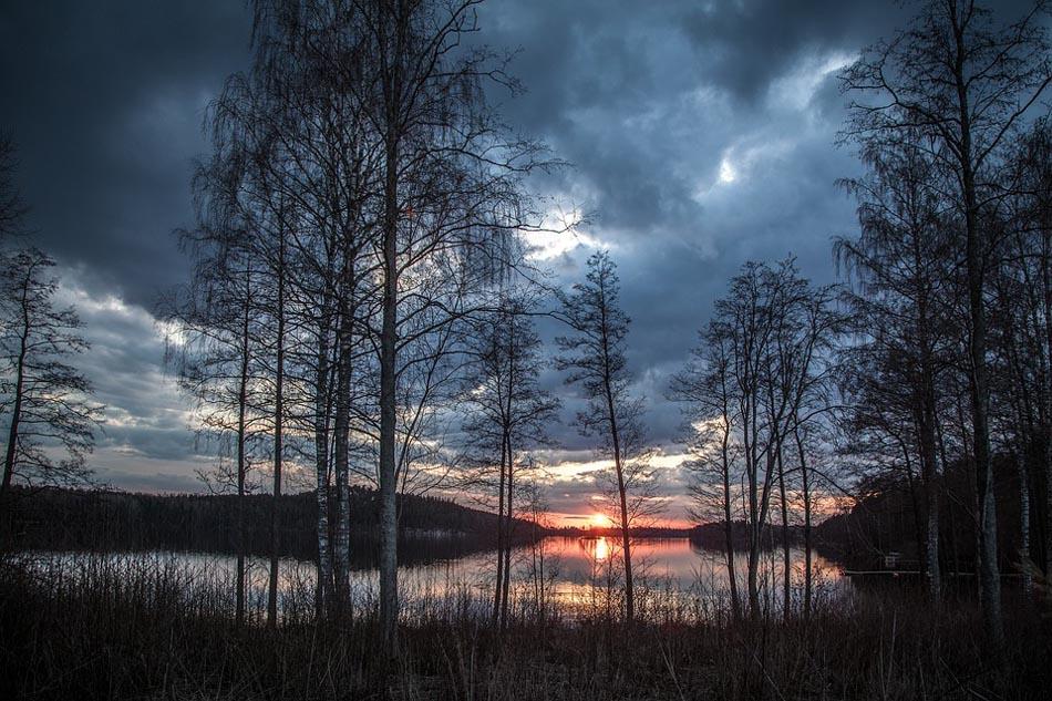 Finlandia, il DNA in una canzone