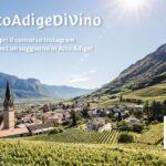 #AltoAdigeDiVino, un contest Instagram per wine lovers