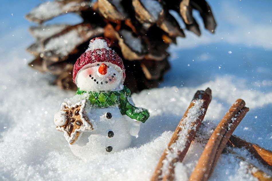 Un pupazzo di neve per un contest solidale