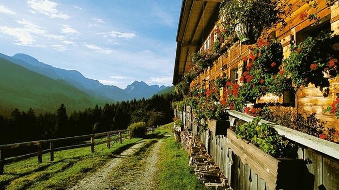 Svizzera, biscotti e formaggio in Val d'Emme